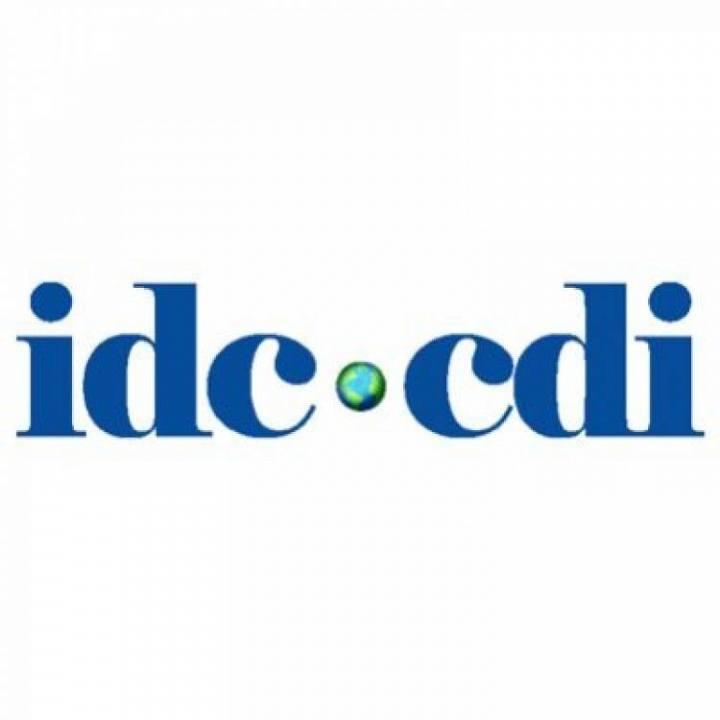 CDI-ի նախազգուշացումը ՀՀ իշխանություններին