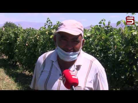Հայկական գյուղը. Աստված մեծ է, մի դուռ կբացի