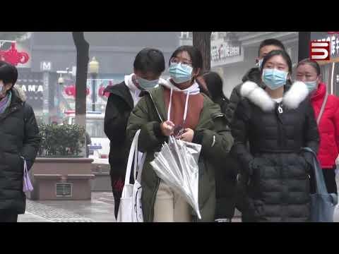 Չինաստանում ծնված նոր վիրուսը գրոհում է աշխարհը