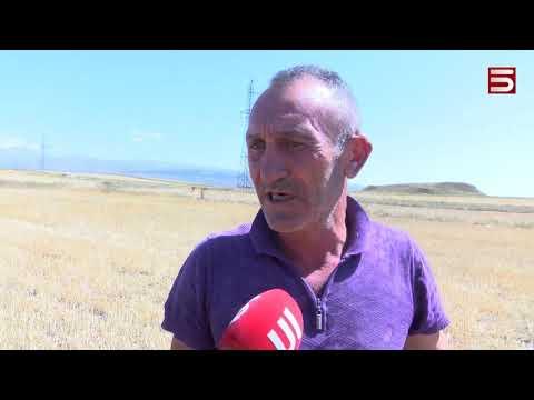 Հայաստանում երաշտ է, կառավարությունը լռում է